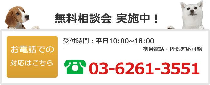 電話でのお問い合わせは03-6261-3551